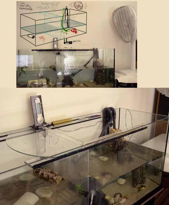 Axolotl et groupe froid - Comment installer un groupe filtrant ...
